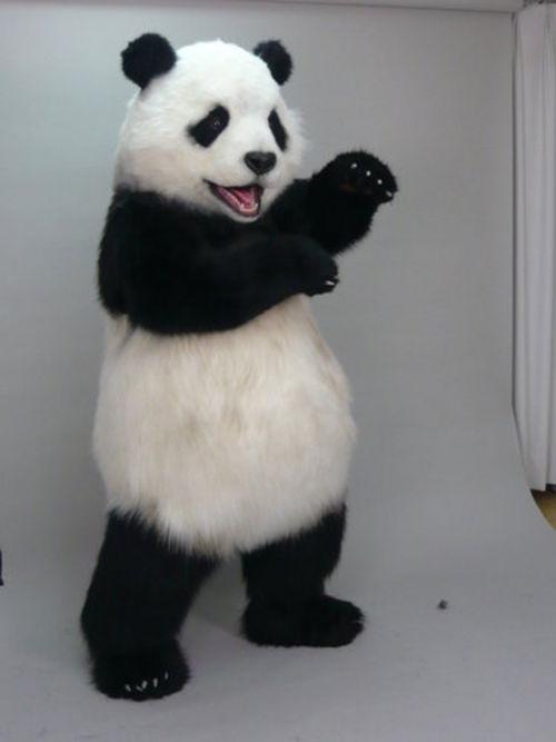 Panda Costume Panda Full Body Suit Costumes