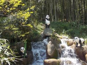panda-Damyang1